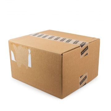 2019-20 Panini Chronicles Basketball Hanger 36 Box Case